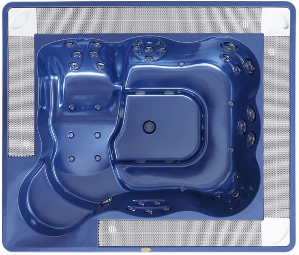 Спа бассейн Jacuzzi Virginia Professional